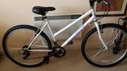 Leisure Bike