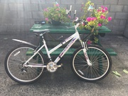 Ladies bicycle,  brand new condition,  rarely used