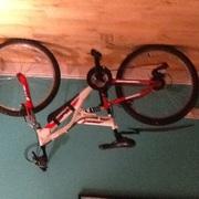 Indie unleashed bike